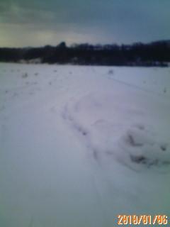 雪のお正月*