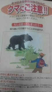 熊ちゃん出没注意報